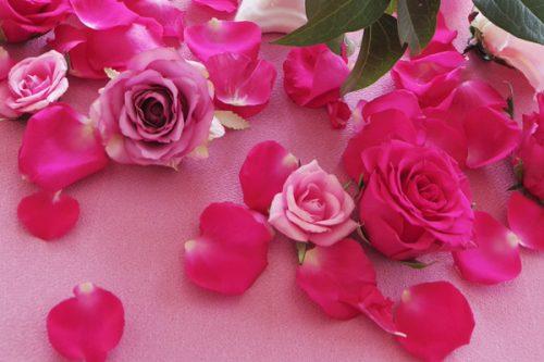 ピンクを身につけることで訪れる「イイコト」5つ