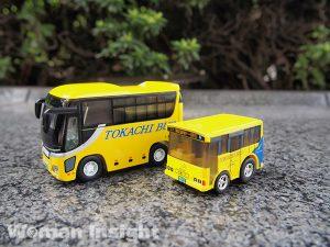 11-bus