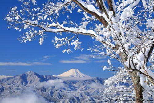 画像1(高尾山から見る富士山_東京都)