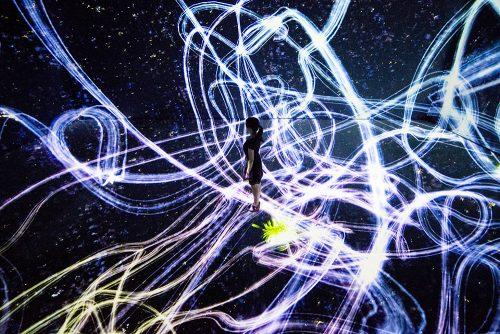 宇宙と芸術展:かぐや姫、ダ・ヴィンチ、チームラボ』