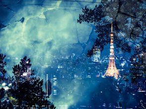 東京,東京タワー,地本出身者