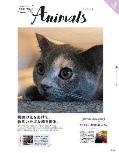 猫,写真,かわいい,撮り方,CanCam