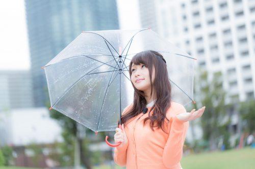 お花見,予定日,当日,雨,延期,決行