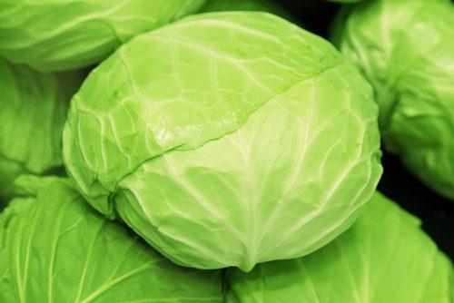春野菜,キャベツ,調理,レシピ