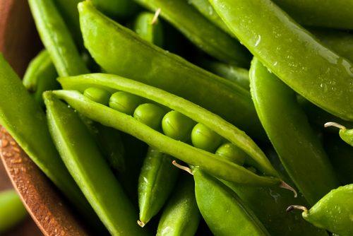 春野菜,ダイエット