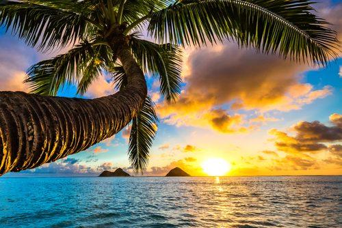 ハワイ,行ってよかった,海外旅行,旅行先,