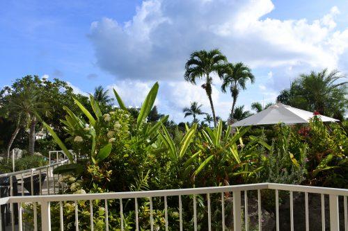 山本美月,Mariana,Saipan,CanCam,Hyatt regency Saipan