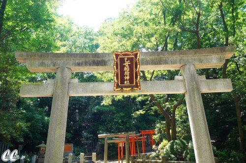 たかのさんぽ,根津神社,神社,高野茂,尾身綾子