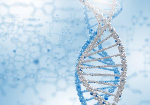 SNS,DNA,略,意味,クイズ,雑学