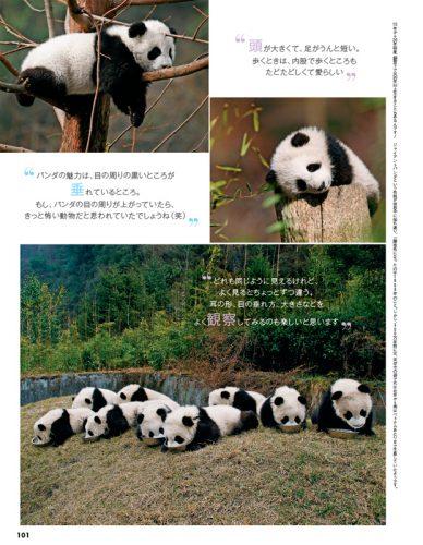 CanCam,2月号,インスタ映え,パンダ