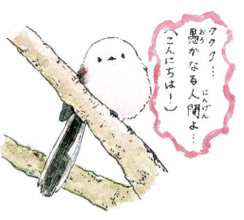 邪(よこシマ)エナガちゃん
