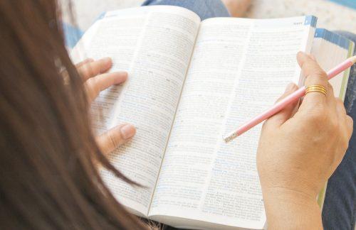 辞書を引く