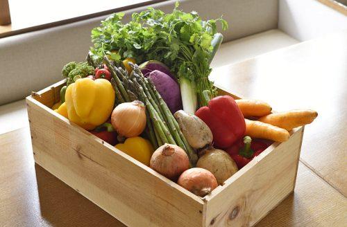 オーガニック野菜×バルkitchen kampo's、野菜、オーガニック野菜