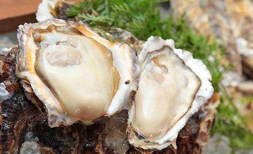 オイスターバー COVO、生牡蠣、牡蠣、オイスター