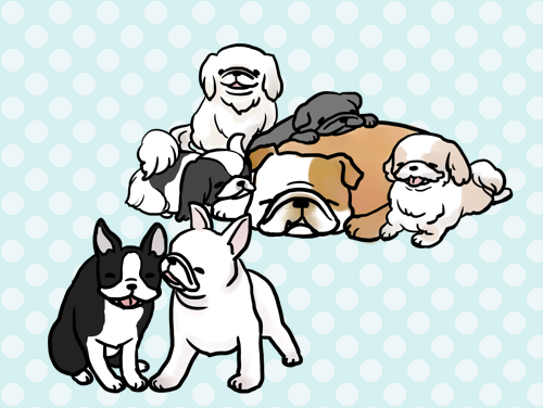 犬いっぱい
