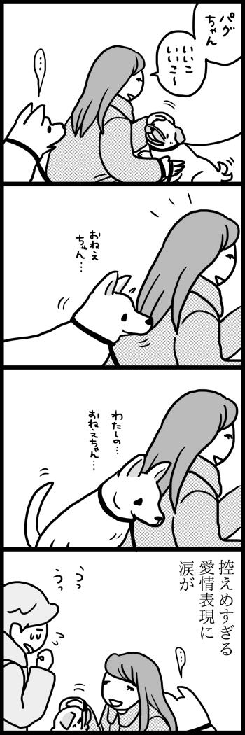 『わたしのおねえちゃん』