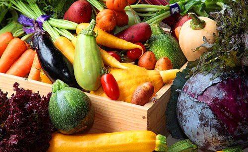 オイスターバー COVOの野菜