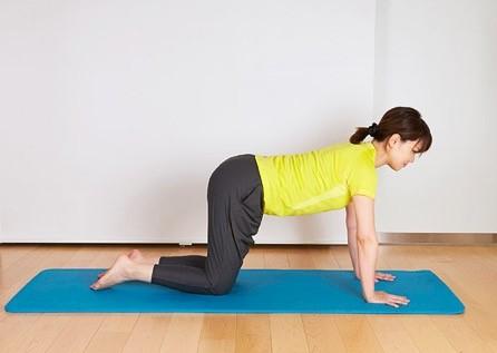 1、 四つんばいの姿勢になり、腰がそらないよう、下腹部を引き締め、腰をフラットにする。