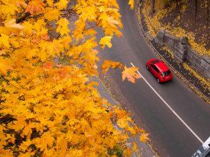 秋の行楽、行きたい場所でわかる!「陥りやすい恋の失敗」心理テスト