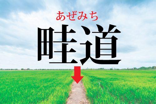 畦道の読み方