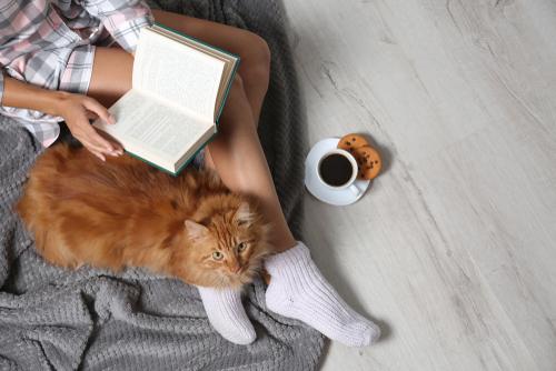 猫のコーヒー