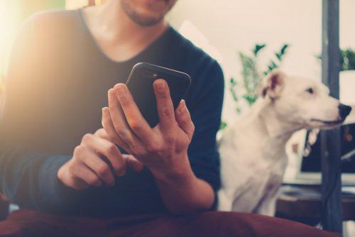 犬のそばでスマホを手に持つ男性