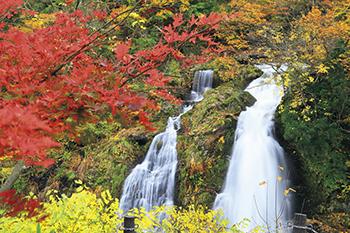 白銀公園 白銀の滝