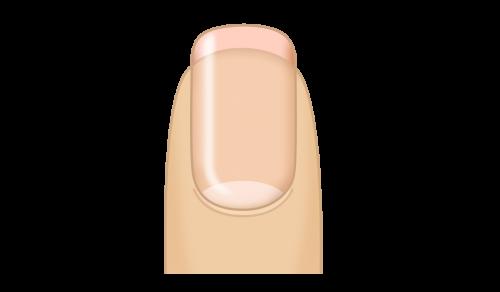 素の爪を育てたい!育爪(いくづめ)とは