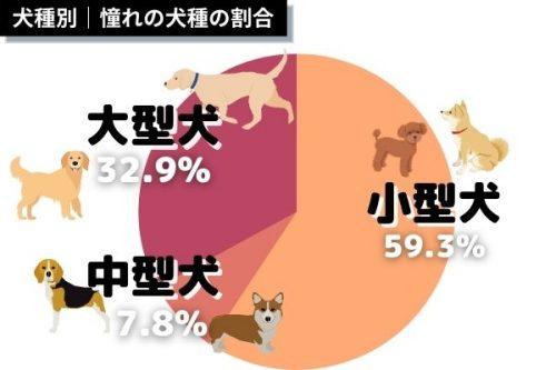 犬種別憧れの犬種の割合